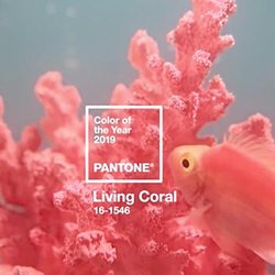 Pinkish-Orange 'Living Coral' Is Named Pantone's Color of the Year for 2019